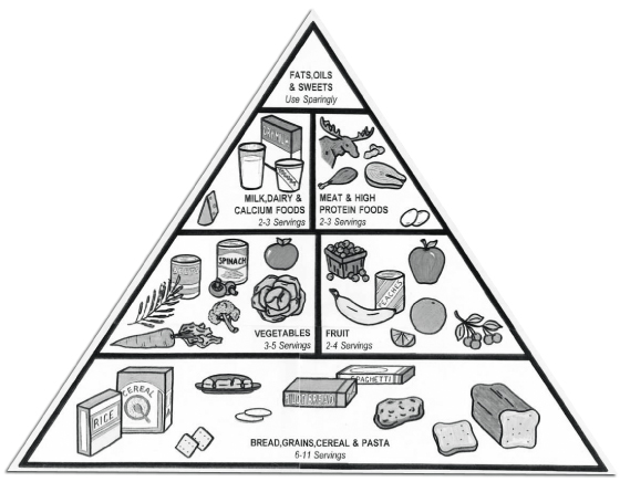 Blank food pyramid coloring page