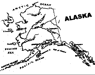 Alaska State Tree Coloring Sheet Coloring Pages Alaska Coloring Pages